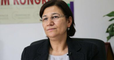 Condemn imprisonment of MP Leyla Güven, 13 other women and 3-year old child