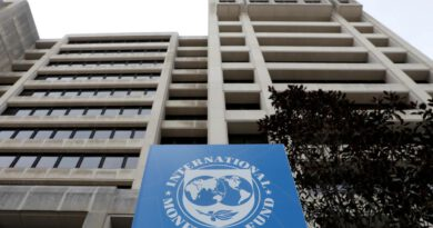 CONFRONT THE INTERNATIONAL MONETARY FUND-WORLD BANK GROUP (IMF-WB) ANNUAL MEETING (October 12-18, 2020)